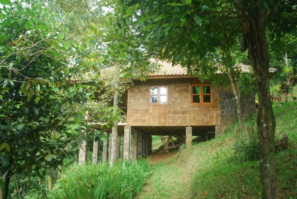 Profile of Puspa Jungle Lodge, Vila Botani