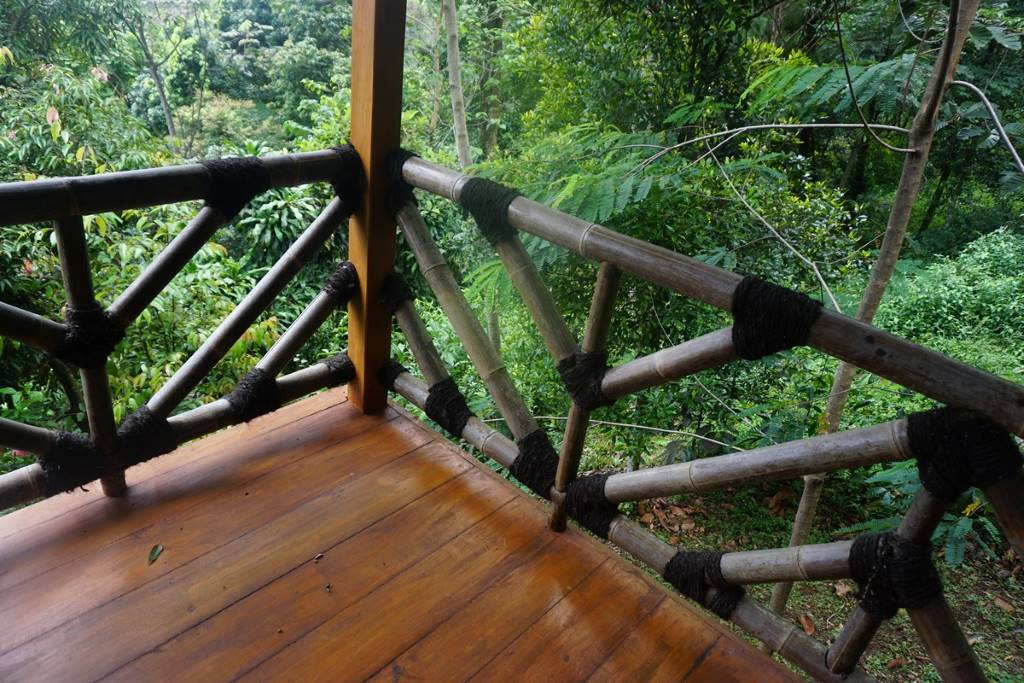 View from terrace at Manggis Jungle Lodge,Vila Botani
